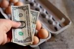 make-money-homesteading